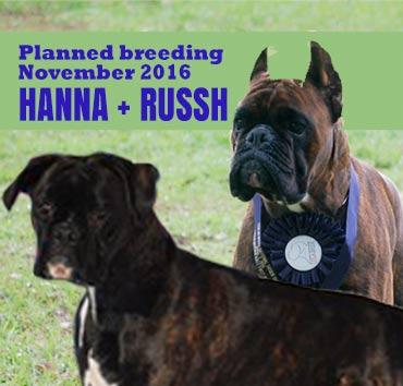 Russh-hanna-column