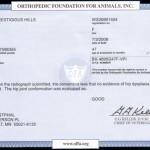 Asha's Hip Certificate