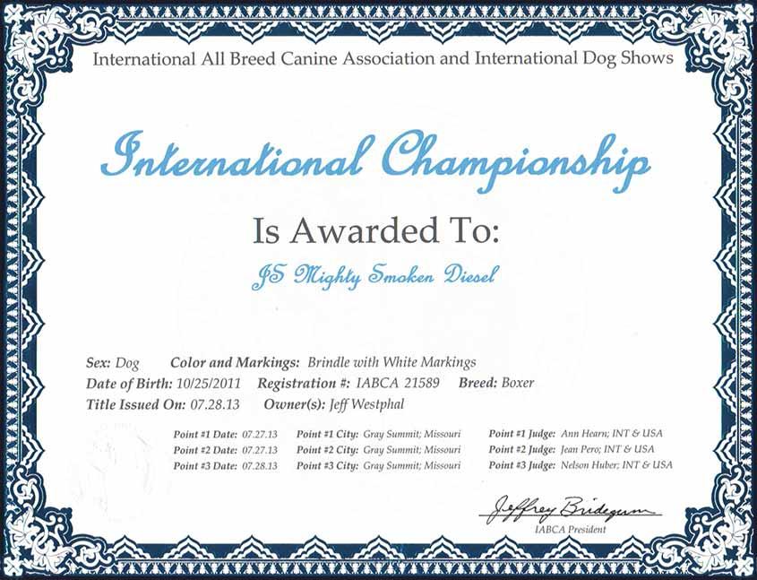 diesel-international-champion