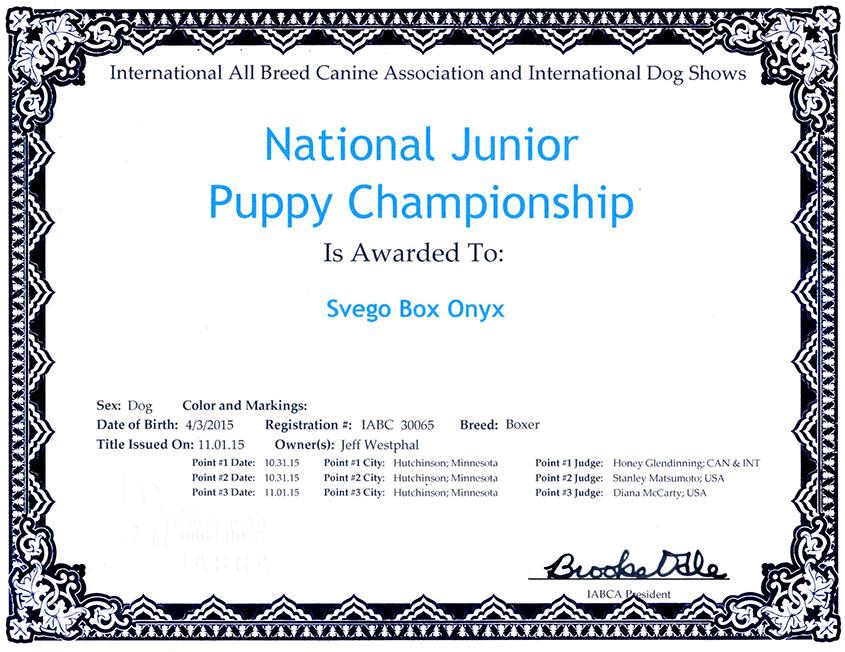 Russh-Nat-Jr-puppy