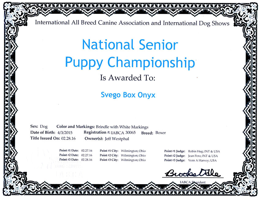Russh-nat-sr-puppy